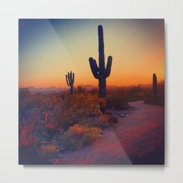 A Cactus Grows In Phoenix Metal Print