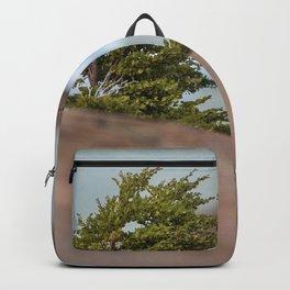 Patagonian Tree Backpack