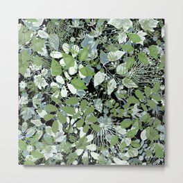 Summer. The leaves are green . Metal Print
