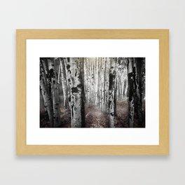 Apsen Framed Art Print