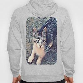 My Favorite Stray Cat Hoody