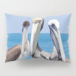 Larry, Curly and Moe Pelicans Pillow Sham