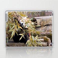 Ailurus Fulgens II Laptop & iPad Skin