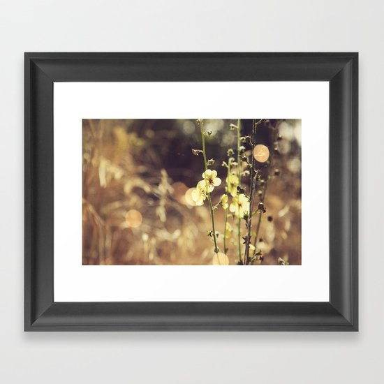Summer Fields | 02 Framed Art Print