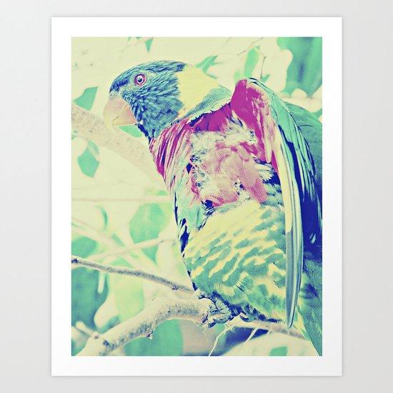 Colorful Bird Dreams  Art Print