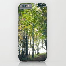 young tree Slim Case iPhone 6s