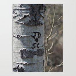 JD + SC Poster