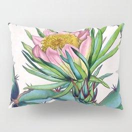 Blooming cactus Pillow Sham
