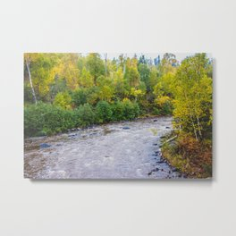 Temperance River State Park, Minnesota 11 Metal Print