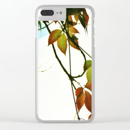 Creeper in autumn colors Clear iPhone Case