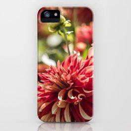 Kinship iPhone Case