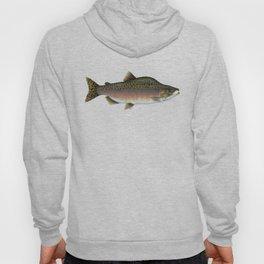 Salmon Artwork Hoody