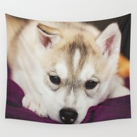 puppy Wall Tapestries featuring husky puppy. by lissalaine