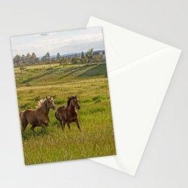 Summer Run Stationery Cards