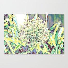 ALLIUM YELLOW Canvas Print