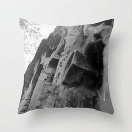 Forgotten Throw Pillow
