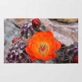 Trichocereus Cactus Flower  Rug