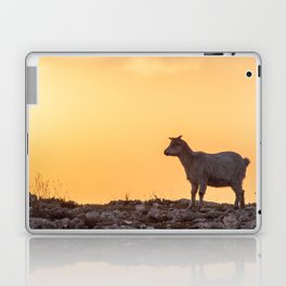 Goat baby sunset E5-5789 Laptop & iPad Skin