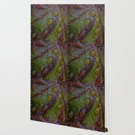 DROPS ON LEAVES Wallpaper