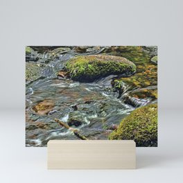 River Dart at Dartmeet Dartmoor. Mini Art Print