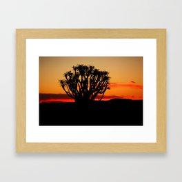 NAMIBIA ... Quiver Tree Sunset Framed Art Print