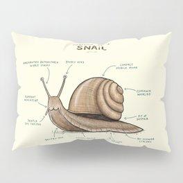 Anatomy of a Snail Pillow Sham