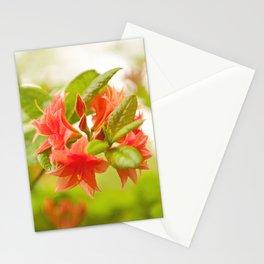 Azalea Il Tasso flowers red Stationery Cards