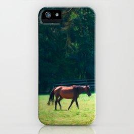 Summer Mares iPhone Case