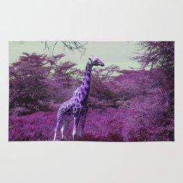 Wild Giraffe in Pink Rug