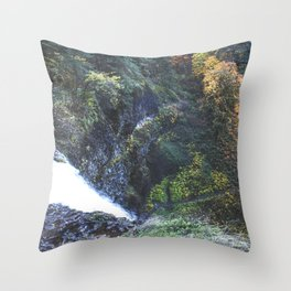 Waterfall Lookout Throw Pillow