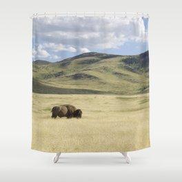 Alone Time - Bison on Range Shower Curtain