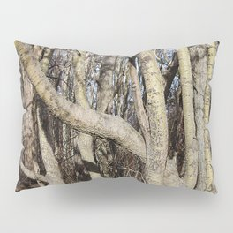 CROWDED GNARLED ASPEN TREES ON CRESCENT BEACH Pillow Sham