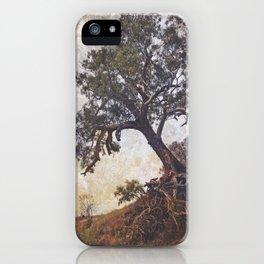 Olden Tree iPhone Case