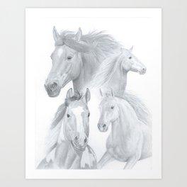 Stallions Art Print