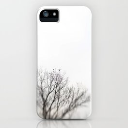 Head South iPhone Case