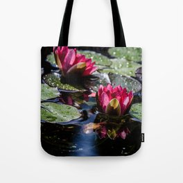 Two water lilies in the sunbeam Tote Bag