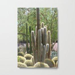 Cactus Garden at Sunnyland Estates in Rancho Mirage Metal Print