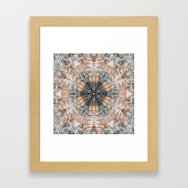 Variations on river birch bark IV Framed Art Print