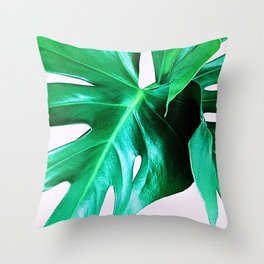 Cheese Plant Leaves Throw Pillow