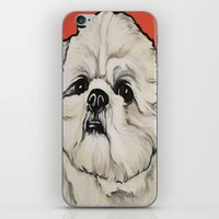 shih tzu iPhone & iPod Skins featuring Waffles the Shih Tzu by Cheney Beshara