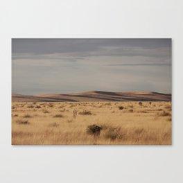 Marfa Landscape Canvas Print