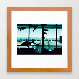 Fish in the Sky Framed Art Print