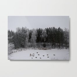 Winter's Tale Metal Print