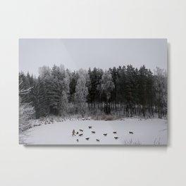 Winter's Tale Metal Print