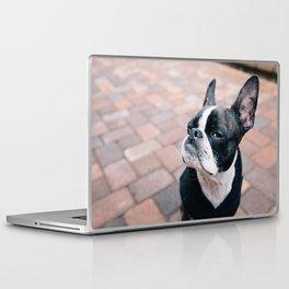 Bruce the Boston Terrier Pug Laptop & iPad Skin