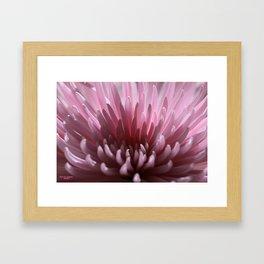 Lilac Spray Framed Art Print