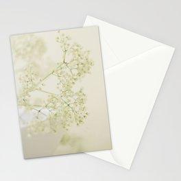Beauty! Stationery Cards