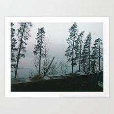Lakes and Trees Art Print