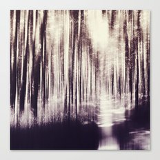 Magical Woods Canvas Print