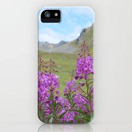 Hatcher Pass Fireweed iPhone Case